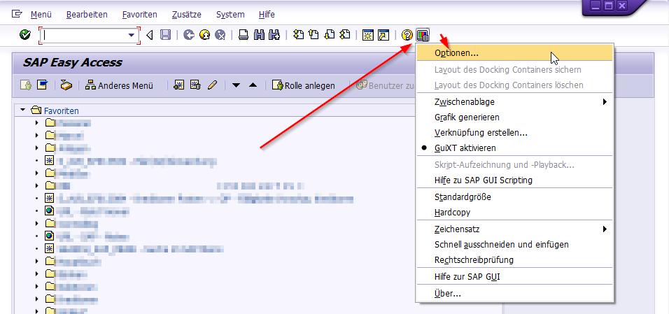 SAP Gui Optionen aufrufen